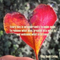 New Beginnings with Lisa Beck Living